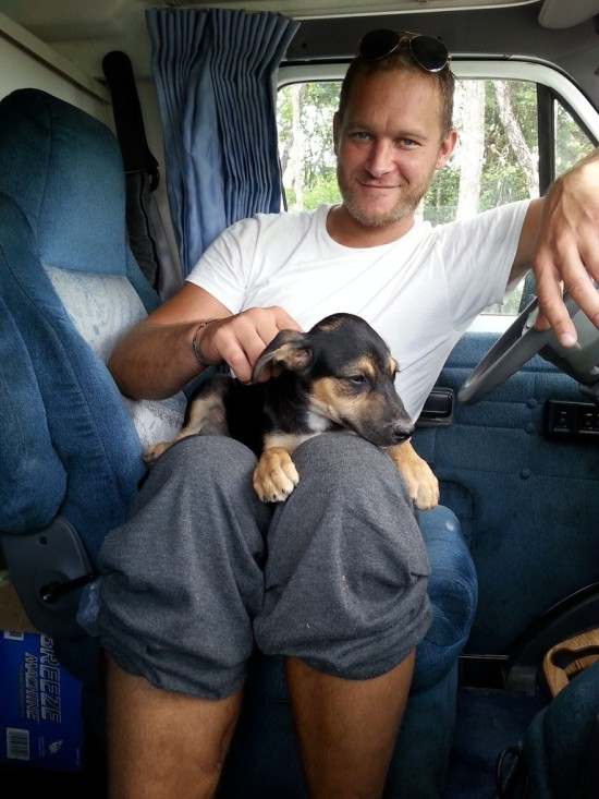BELIZE 2 PERFECT PUPPY (1)