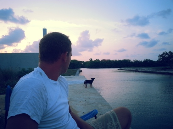 BELIZE 2 PERFECT PUPPY (8)