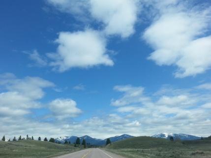 Montana 5