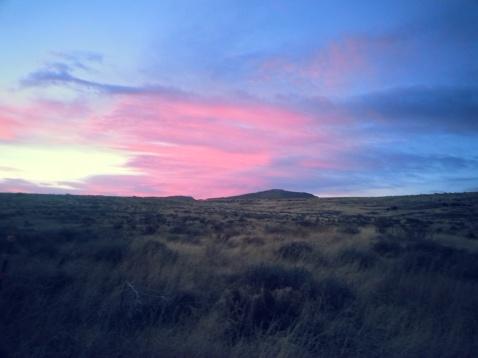 New Mexico 3