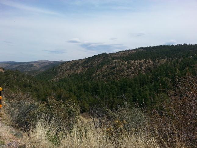 New Mexico 4
