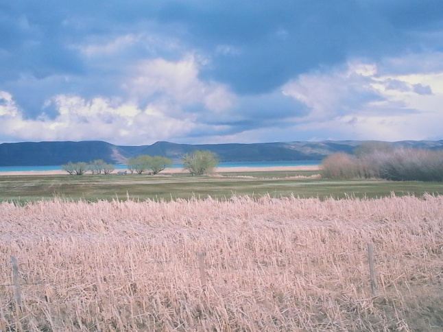 Wyoming 13