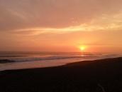 SURFERS PARADISE (13)