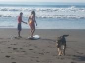SURFERS PARADISE (17)